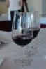 """Cata de Vinos con Denominación de Origen La Palma """"San Antonio del Monte"""" :: Cata de Vinos con Denominación de Origen La Palma"""