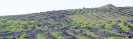 Weinlandschaft von Las Machuqueras  :: Paraje vitícola Las Machuqueras